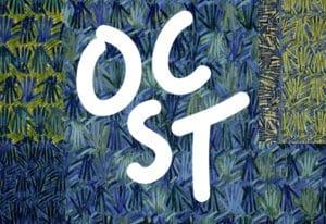 Concert Orchestre  à Cordes Supérieur de Toulouse OCST, isdaT
