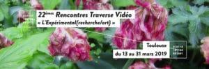 Visuel Traver Vidéo 2019