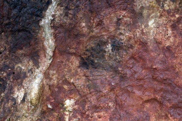 Pérégrinations paléolithiques — Cycle préhistoire